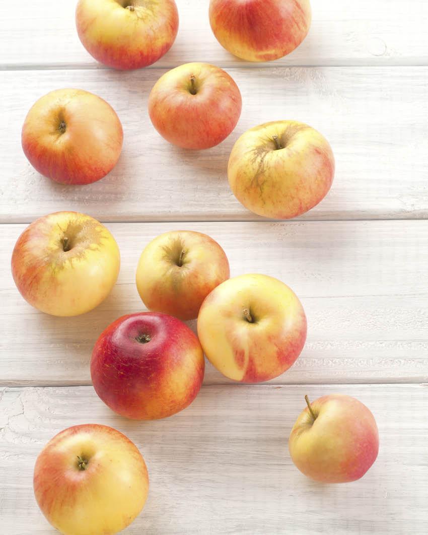 Manzanas. 8. Manzanas
