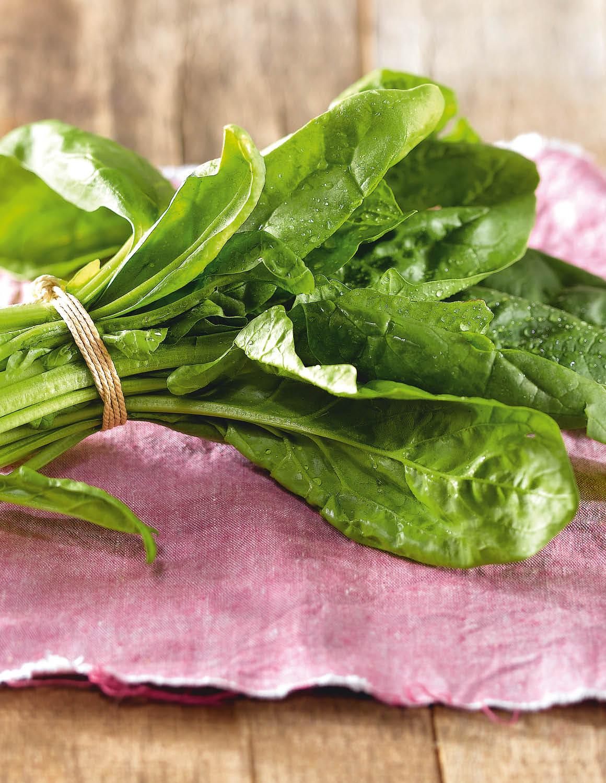 Espinacas. Espinacas, rica en vitaminas, magnesio y hierro