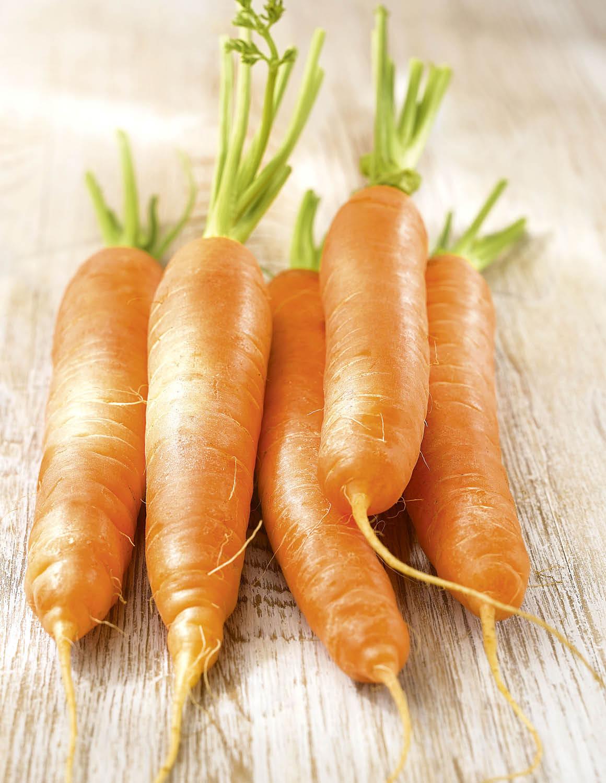 Zanahoria. Zanahoria, fuente de betacaroteno y vitaminas