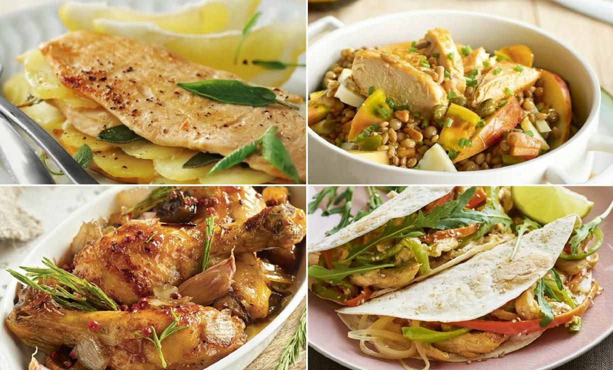 Recetas de comida usando pollo
