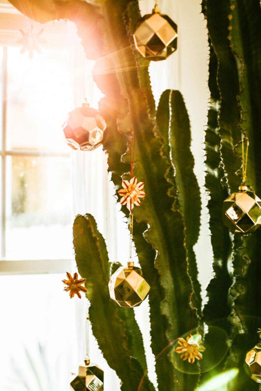 decoraciones navideñas cactus. Cactus navideño