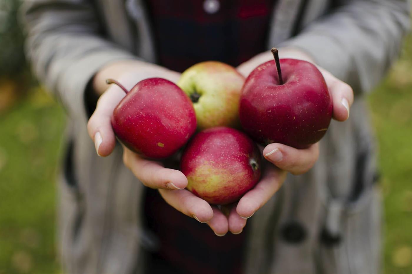 evitar estrenimiento sin pastillas fruta con piel