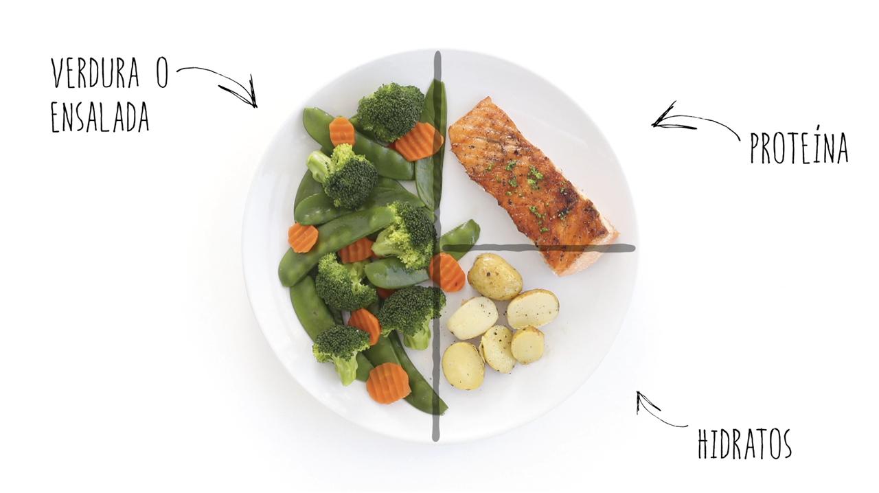 dieta del plato pdf