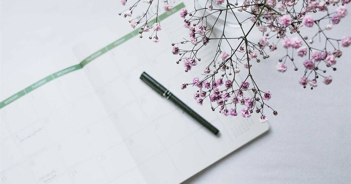 Planificador diario bonito para descargar e imprimir