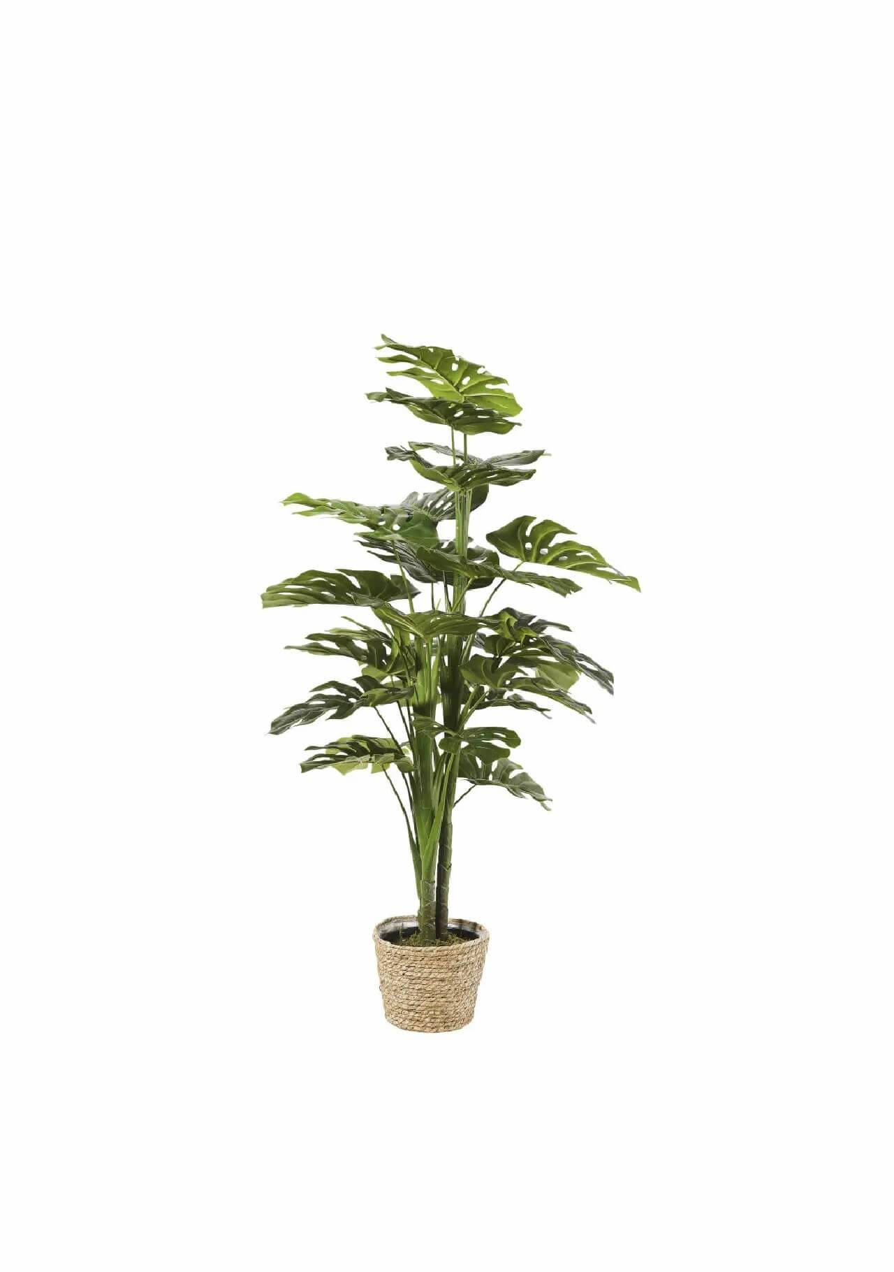 plantas artificiales bonitas monstera Maisons du Monde, 69,99€